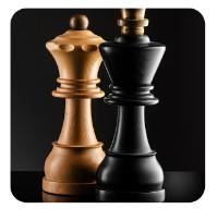 Šachy